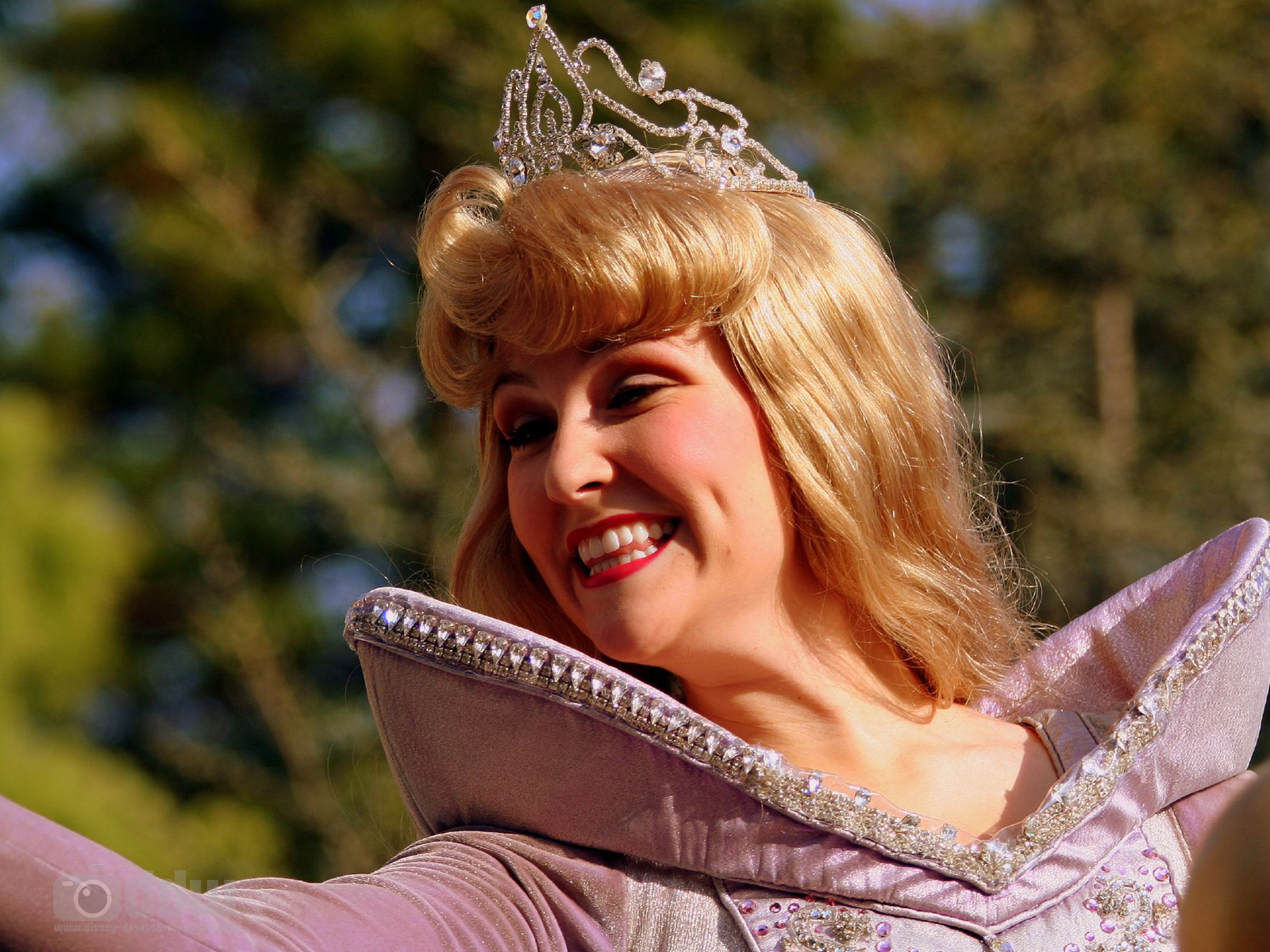 Also known as sleeping beauty has her own castle in disneyland photo